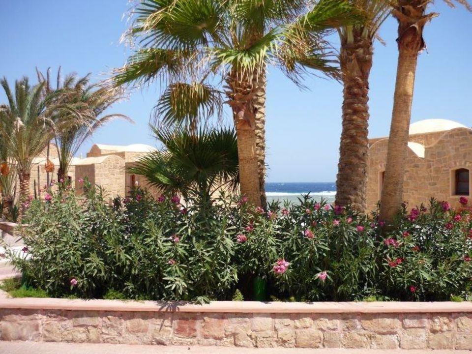 Gartenanlage Mövenpick Resort El Quseir