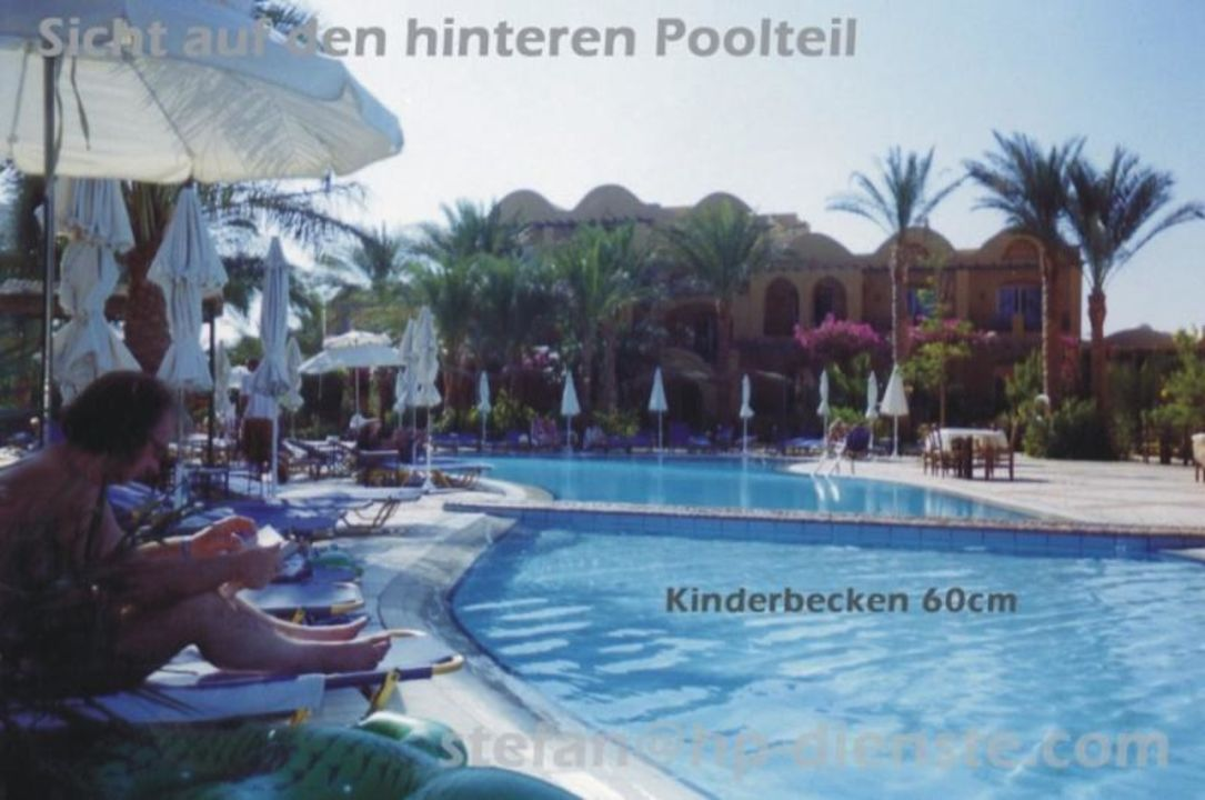 Pool-3 / 1-2 Fly Fun Club Makadi Jaz Makadina