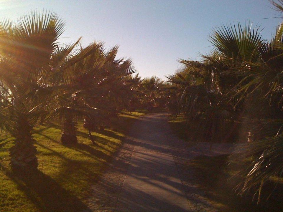 Weg zum Strand Limak Atlantis De Luxe Hotel & Resort
