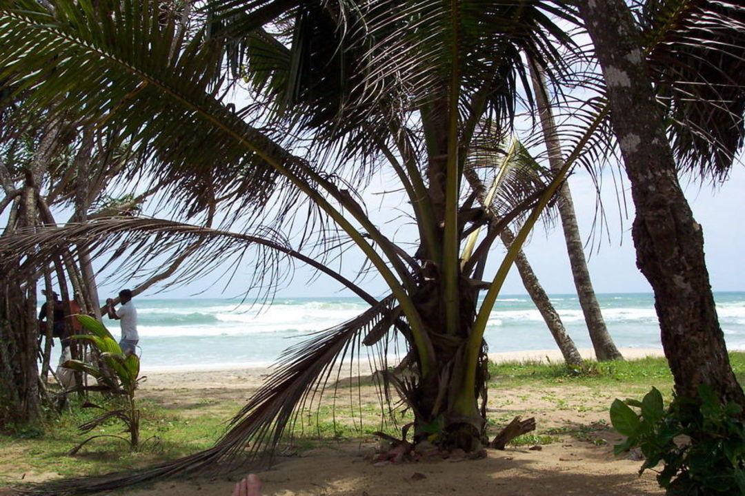 Ausblick vom Zimmer Hotel Koggala Beach