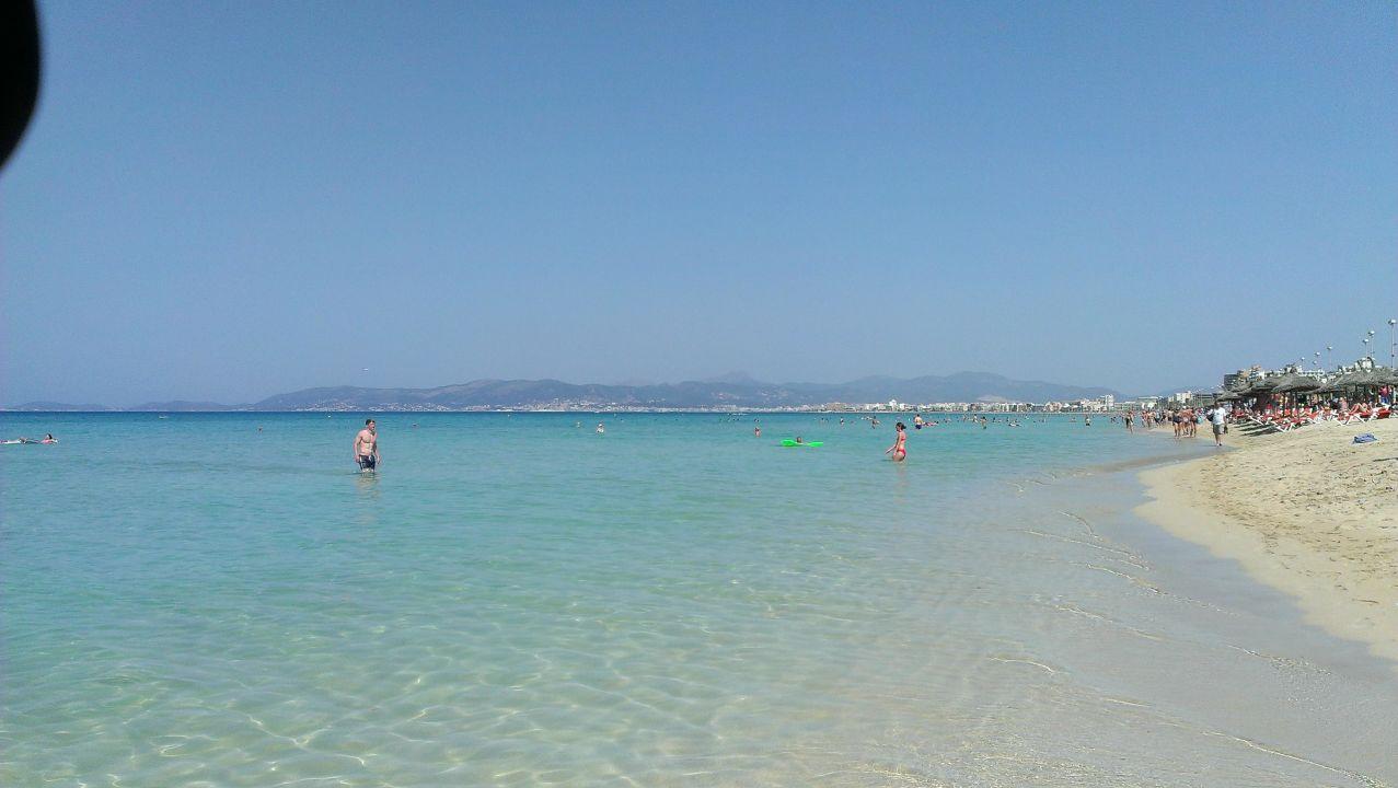 Strand Ballermann 8 Hotel Cosmopolitan Platja De Palma Playa De