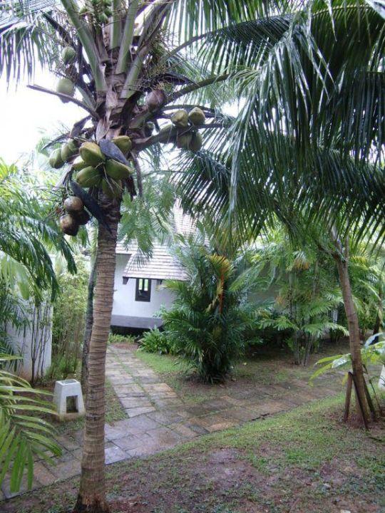 Garten Hotel Peace Laguna Resort