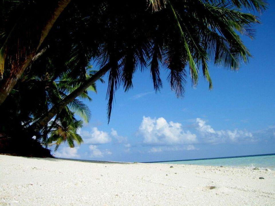 Fihalhohi ein Traum Hotel Fihalhohi Island Resort