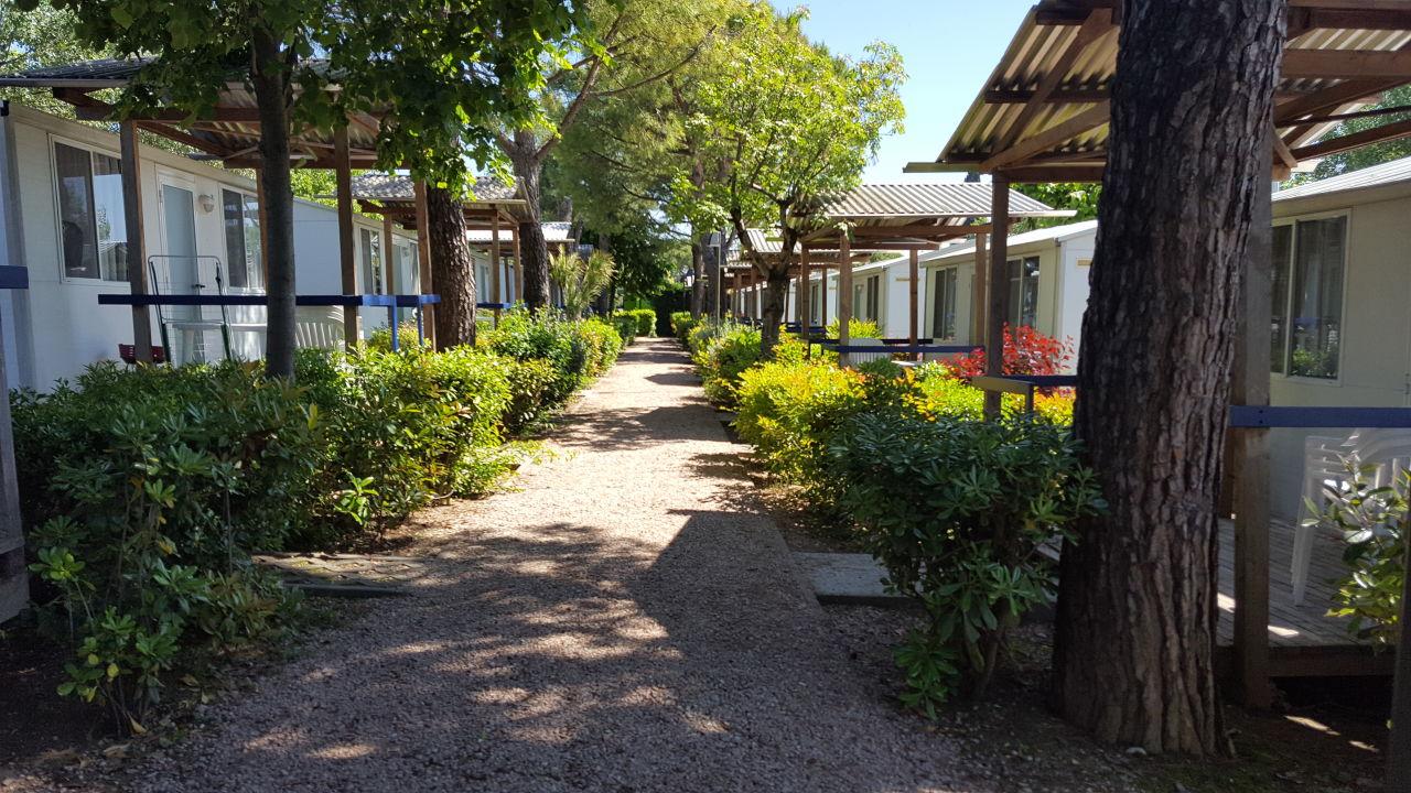 Gartenanlage Camping Serenella