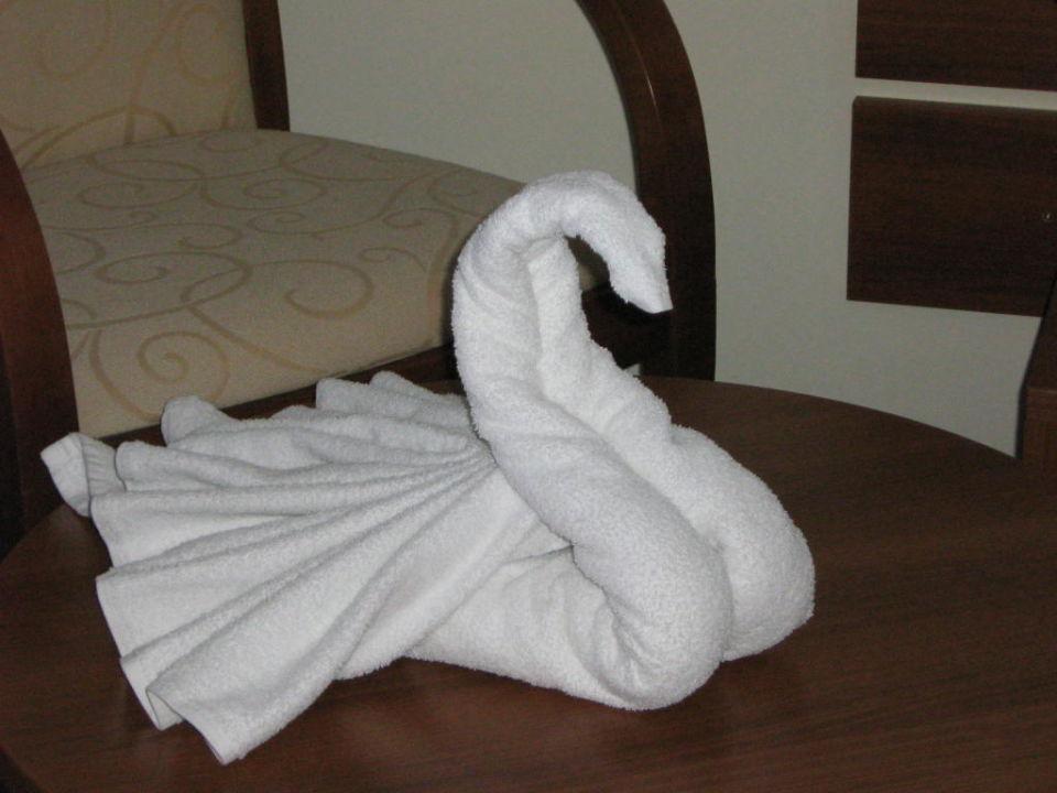 schwan aus handtuch