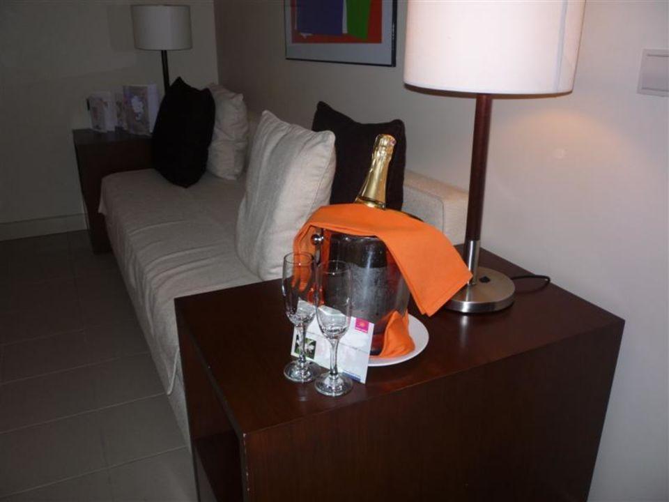 Champagne Lara Barut Collection