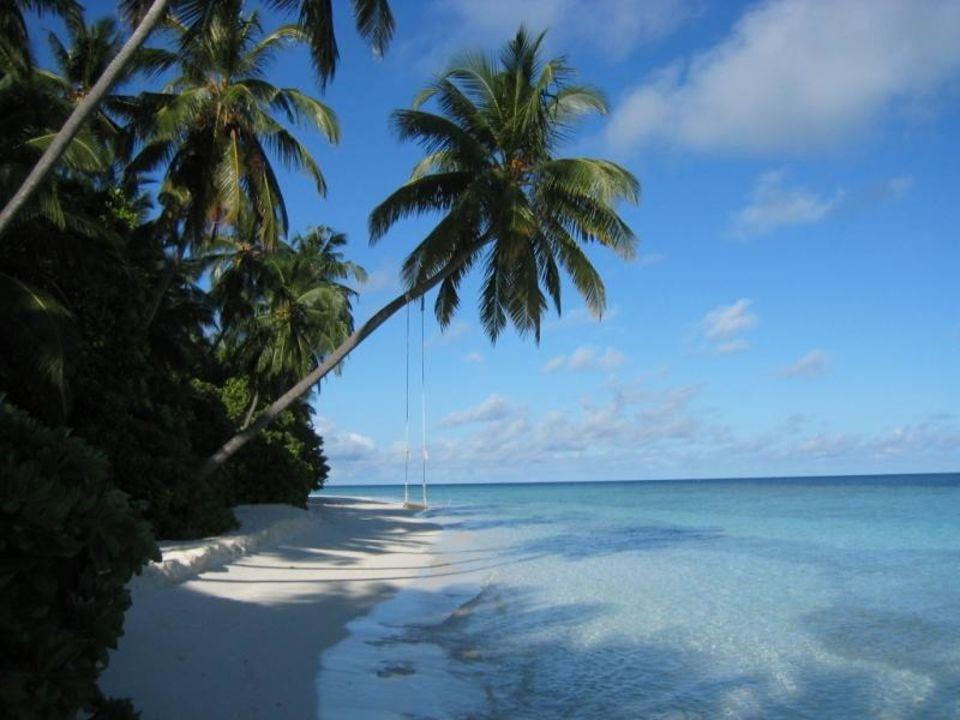 über dem Wasser schaukeln Hotel Fihalhohi Island Resort