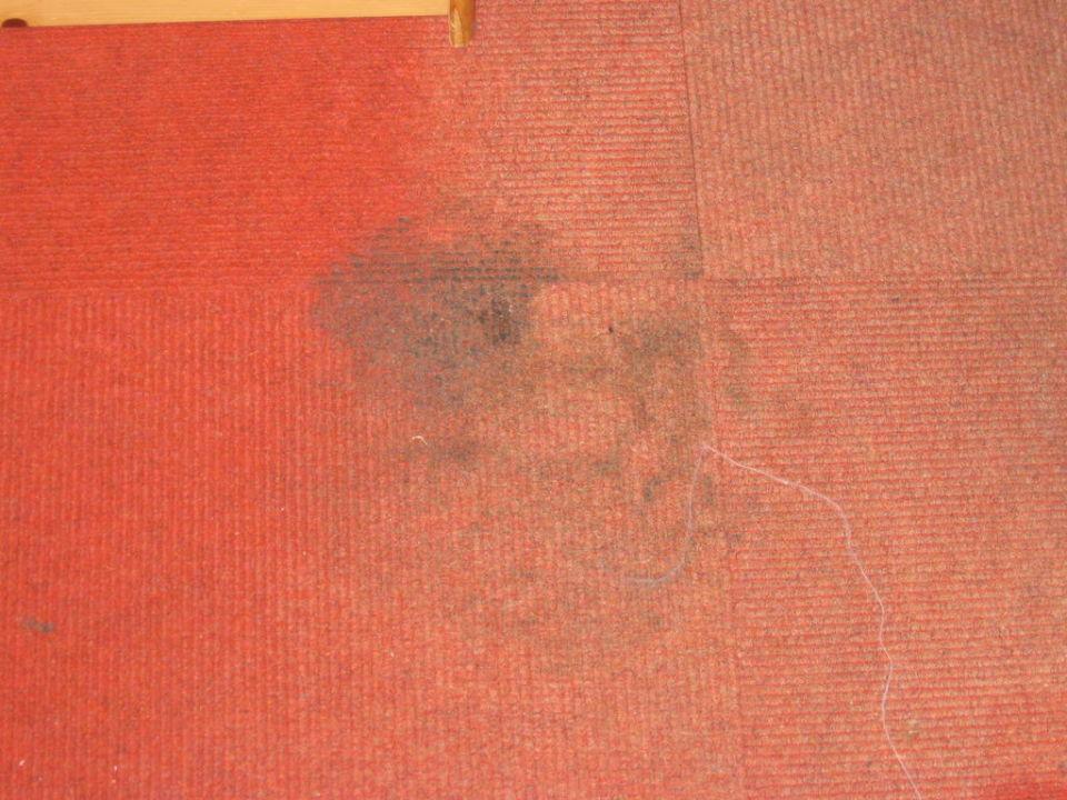 Teppich Gasthof Bergheimat
