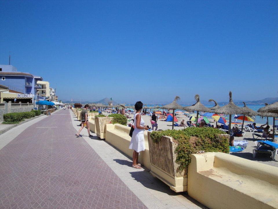 Hotel Montecarlo Mallorca Can Picafort