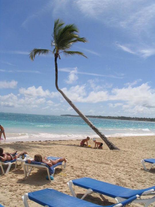 Strand VIK Hotel Cayena Beach Club