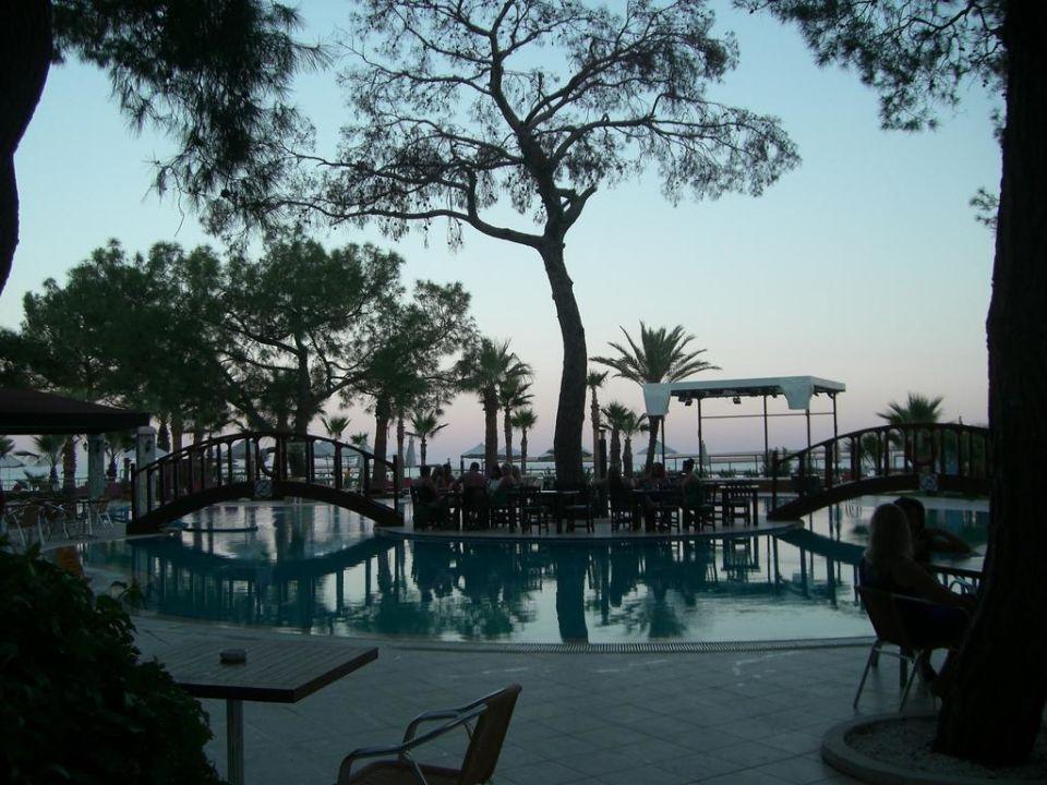 Pool Otium Hotel Life