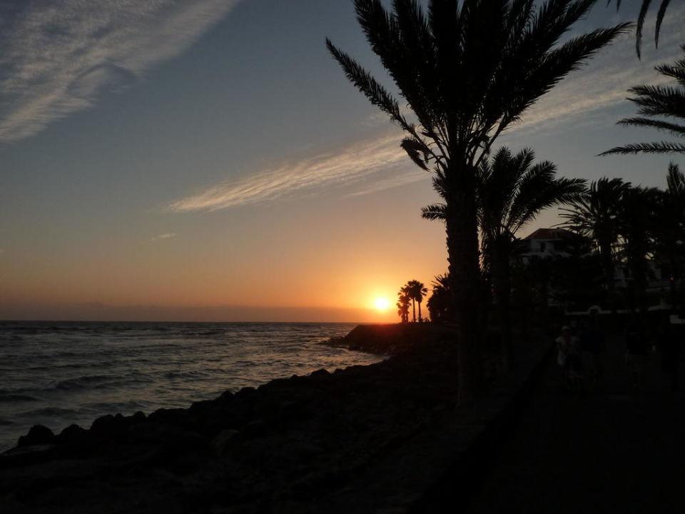Sonnenuntergang apartamentos parque santiago 3 playa de las americas holidaycheck - Apartamentos parque santiago ...