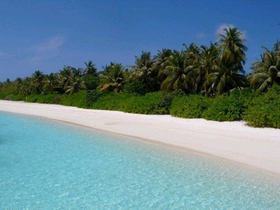 Strand bei den Wasserbungalows Sun Island  Resort & Spa