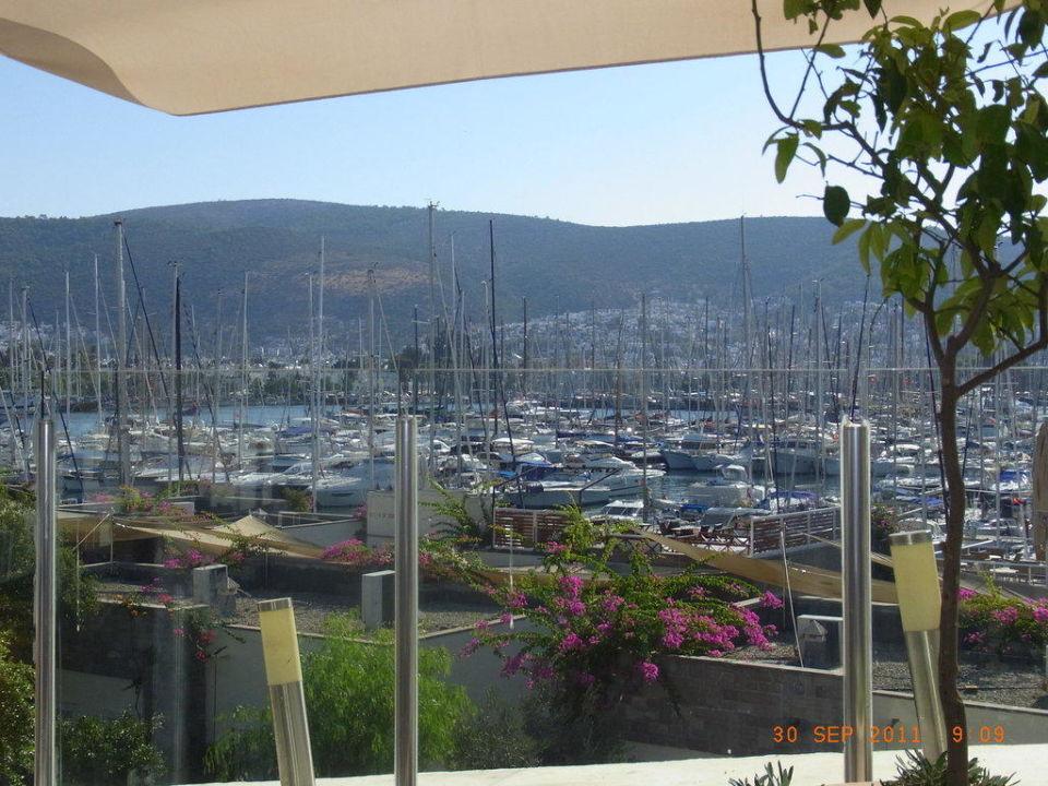 Frühstücksterrasse Hotel Marina Vista