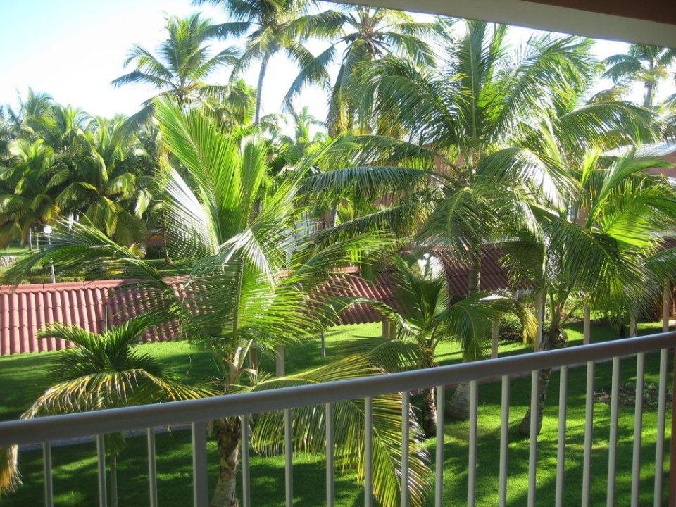 Blick vom Balkon zum Garten Grand Palladium Bávaro Suites Resort & Spa