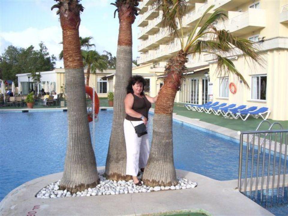 Margarete Hotel Aamapola Grupotel Amapola