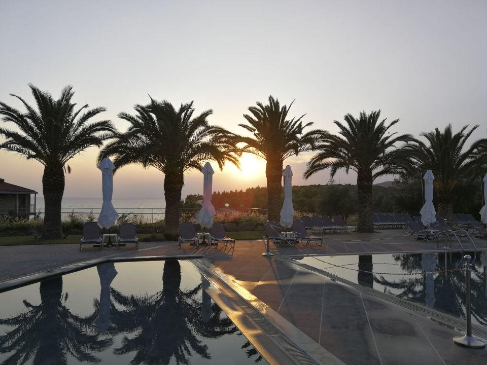 Pool Hotel Blue Dolphin
