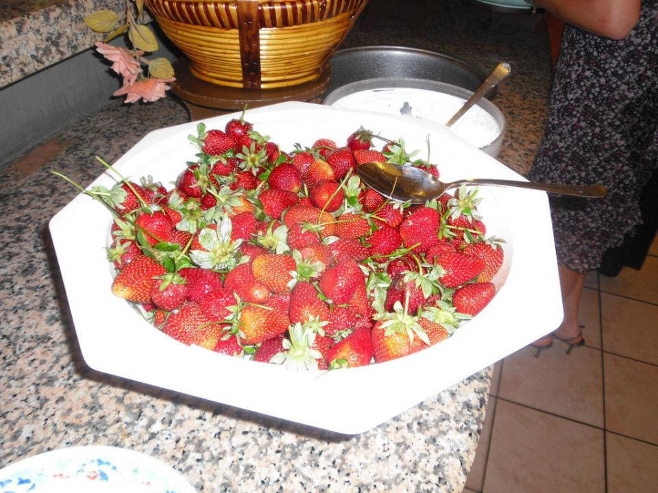 Leckere Erdbeeren Güral Premier Belek