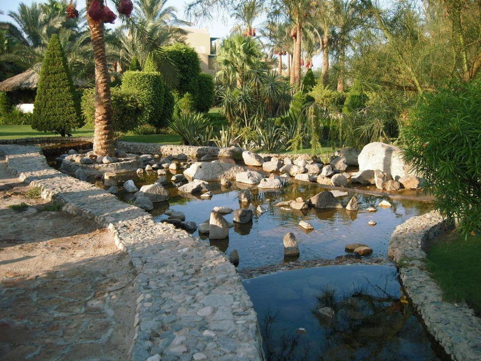 Kleiner Wasserlauf im Garten\
