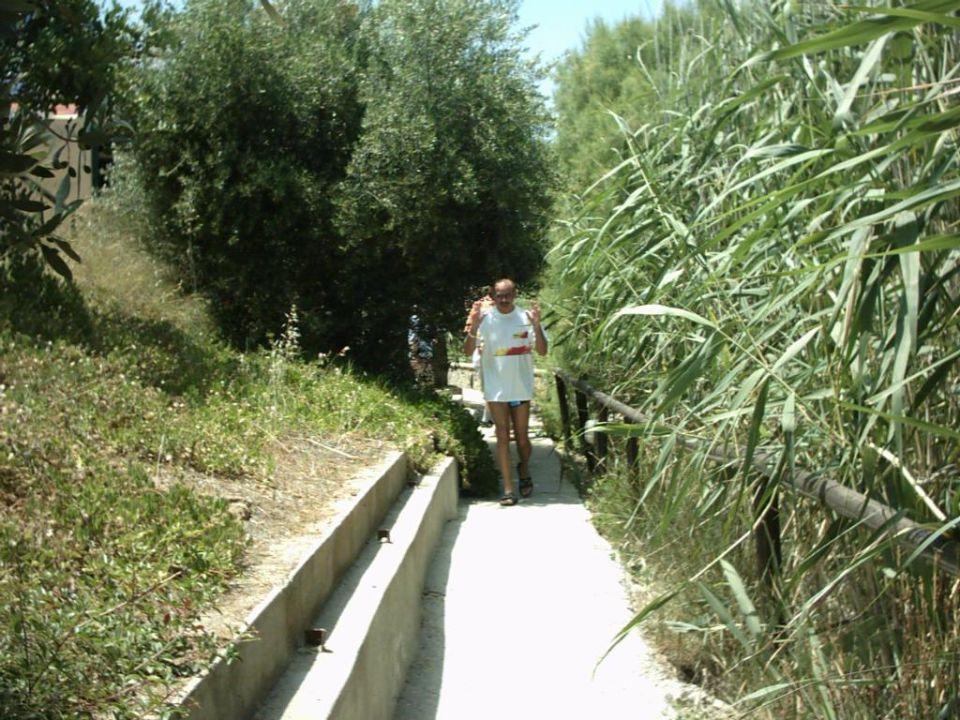 Weg zum Strand Hotel Almiros Beach