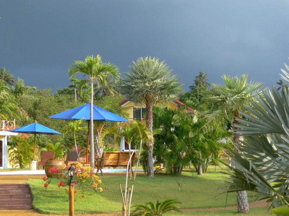Parkanlage Palm Beach Resort