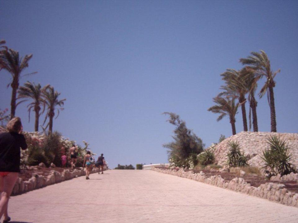 Weg zum Shuttle Strand Sharming Inn Hotel