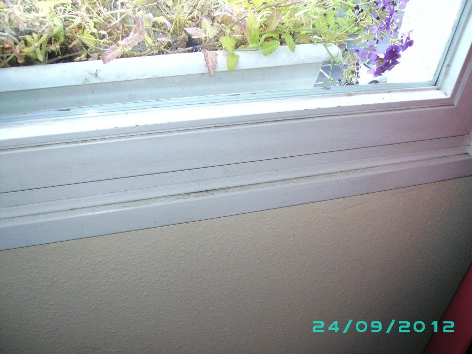 Bild fenster zu carat vitalhotel monschau in monschau for Fenster 0 5 ug