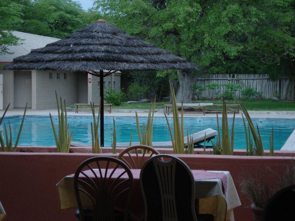 Pool Hotel Halali Camp