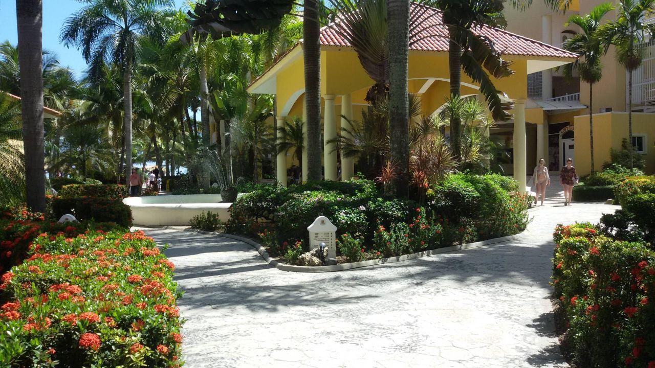 bild toller strand zu hotel viva wyndham tangerine in. Black Bedroom Furniture Sets. Home Design Ideas