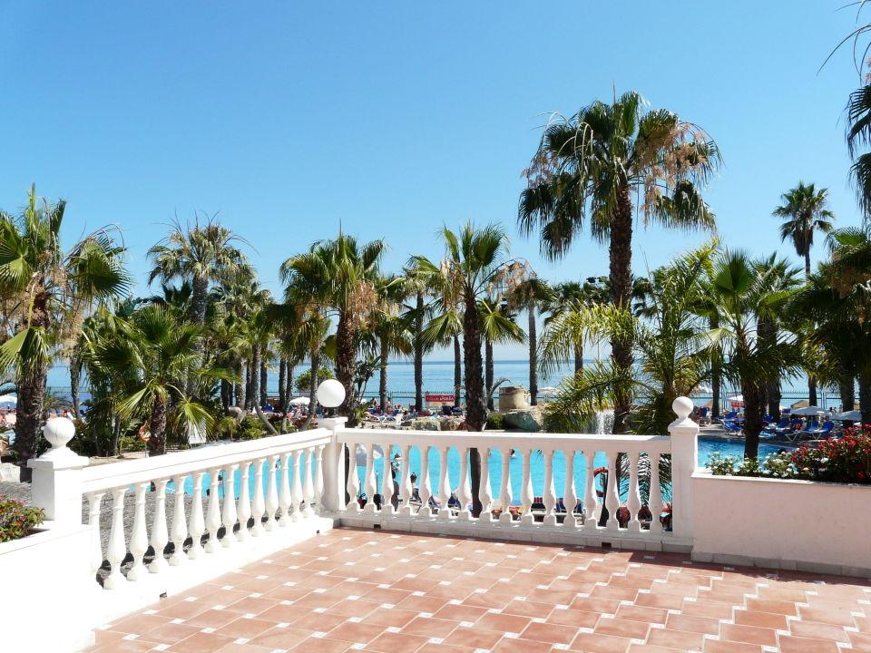 Pool Unter Palmen Hotel Marbella Playa Marbella Holidaycheck