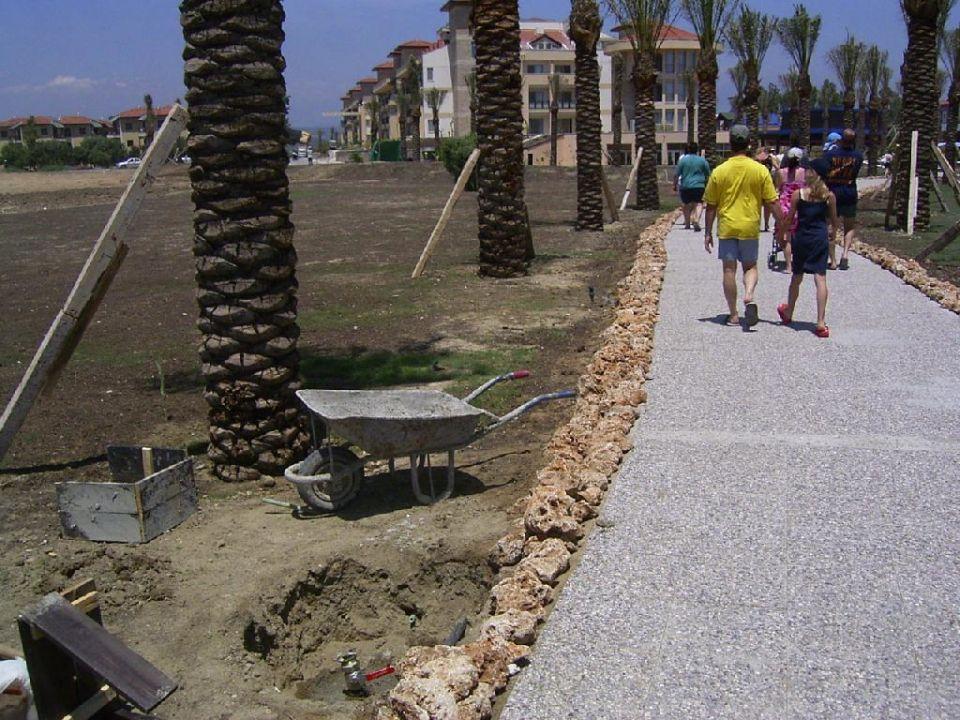 Der Weg zum Strand von Palmen gesäumt lti Xanthe Resort & Spa