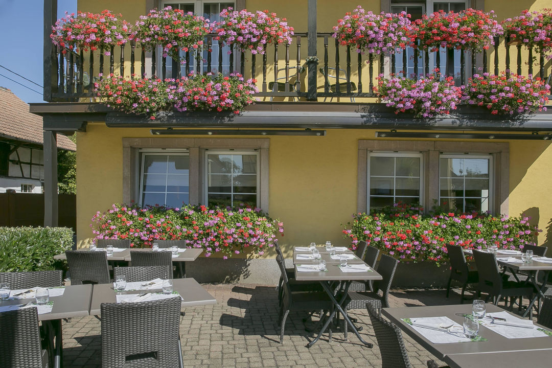 terrasse best western hotel au cheval blanc mulhouse baldersheim holidaycheck elsass. Black Bedroom Furniture Sets. Home Design Ideas