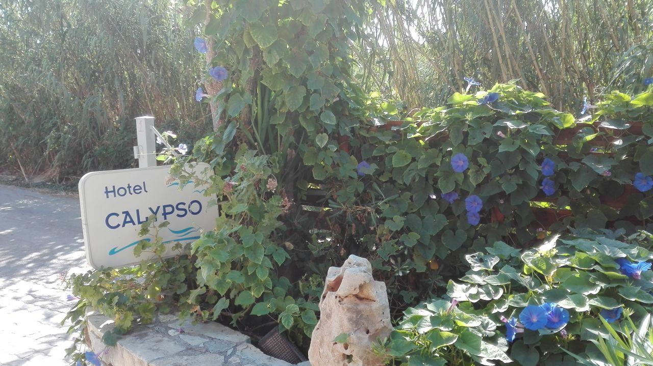 Gartenanlage Hotel Calypso