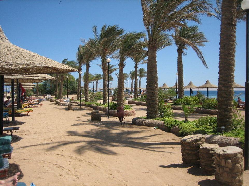 Weg zur Marina Arabia Azur  Resort