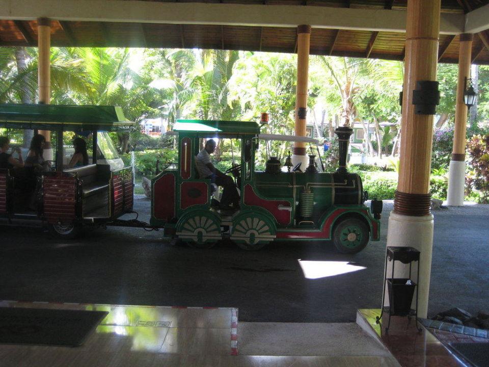 Bimmelbahn mit 17 Haltestellen Grand Palladium Bávaro Suites Resort & Spa