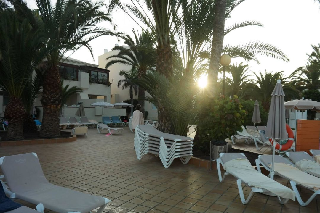 Bild liegen reservieren zu riu oliva beach village in for Riu oliva beach village