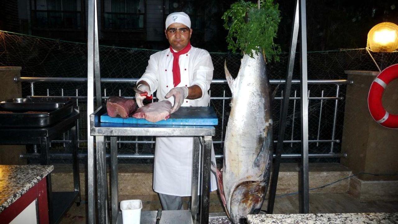 Themenabend Fisch Hotel Terrace Beach Resort