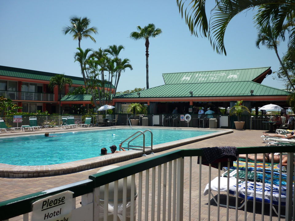 Pool Poolbar Wyndham Garden Hotel Fort Myers Beach Fort Myers Beach Holidaycheck