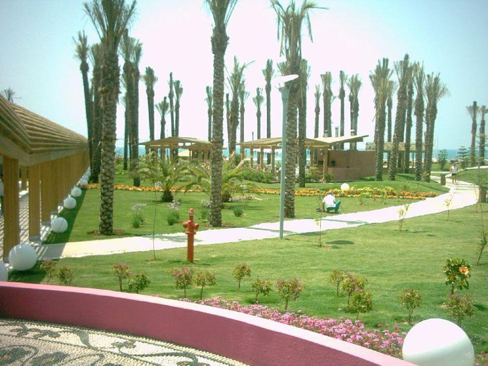 Grünanlage Hotel Delphin Diva