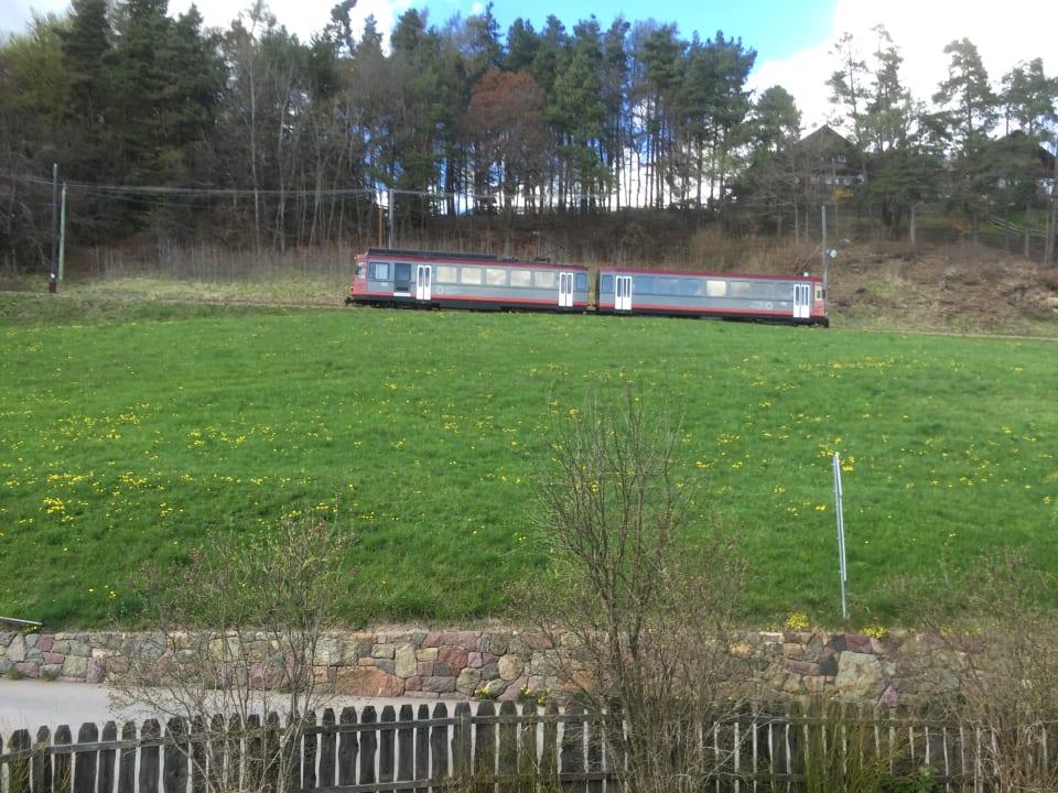 Ausblick Weidacherhof