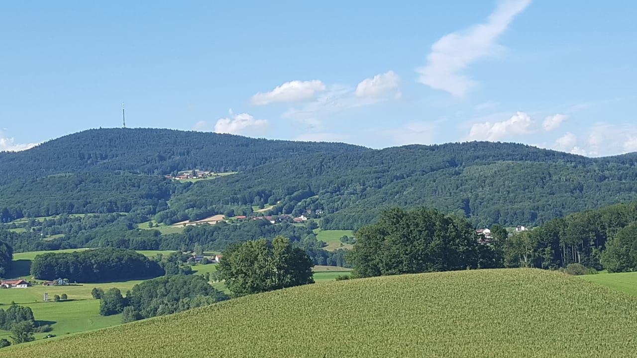 Ausblick Ferienwohnungen Ederhof