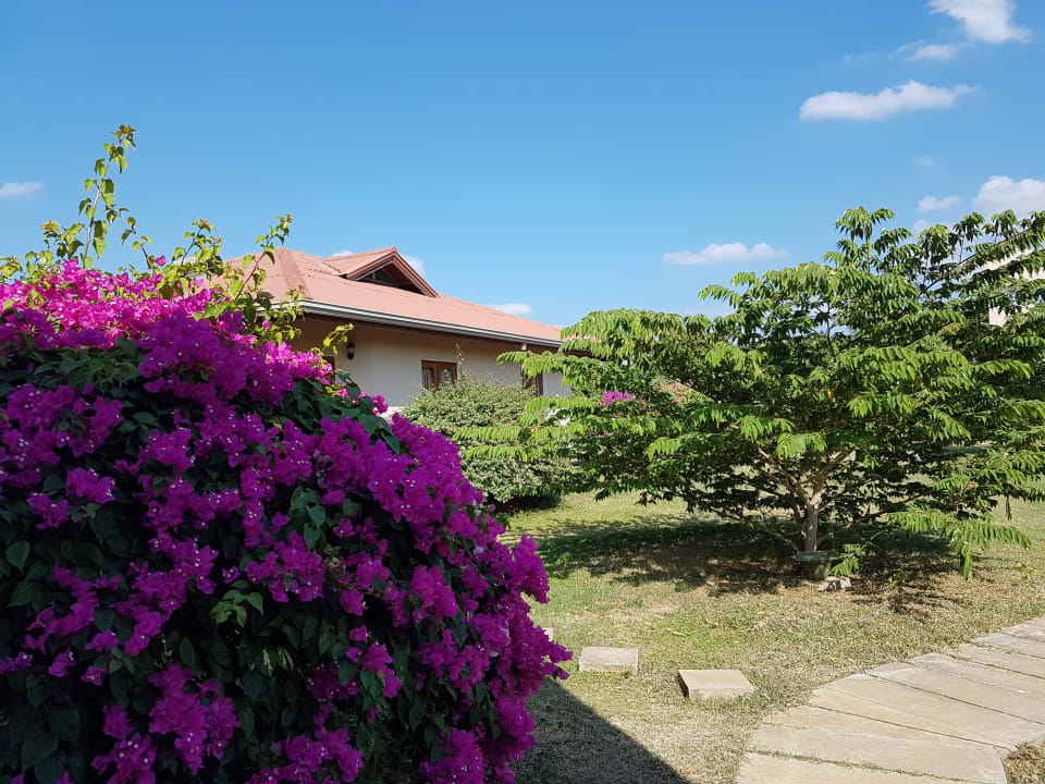 Außenansicht Hibiscus Garden Hotel