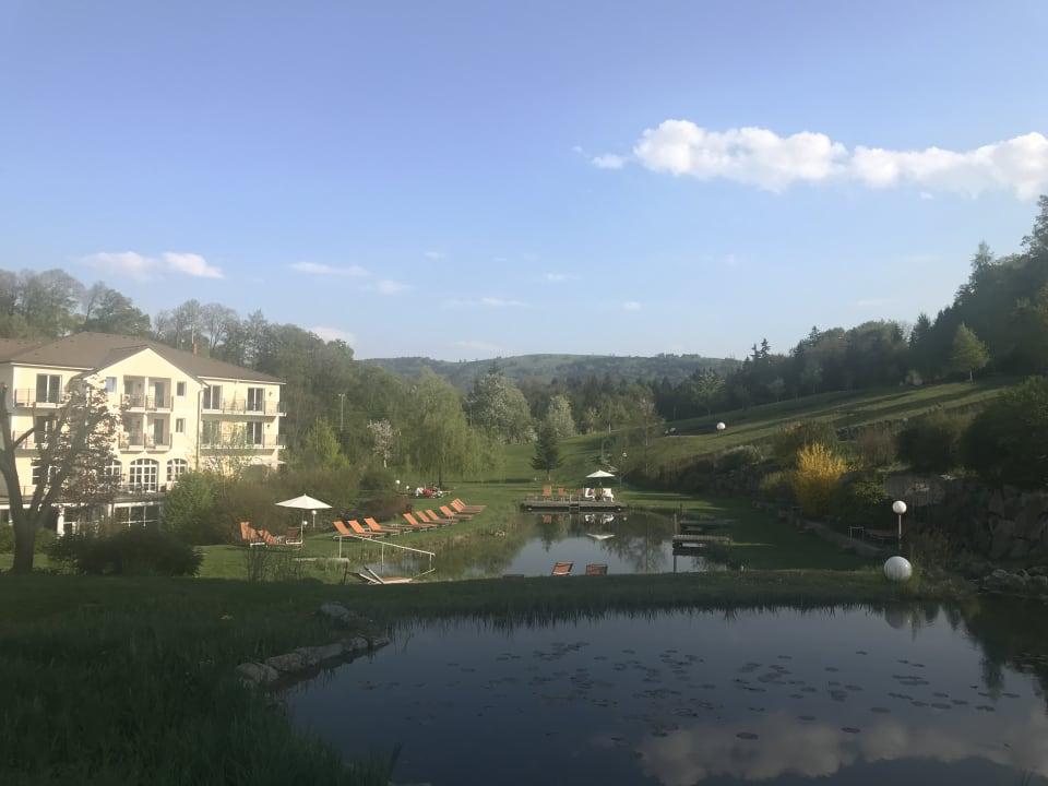 Pool RelaxResort Kothmühle