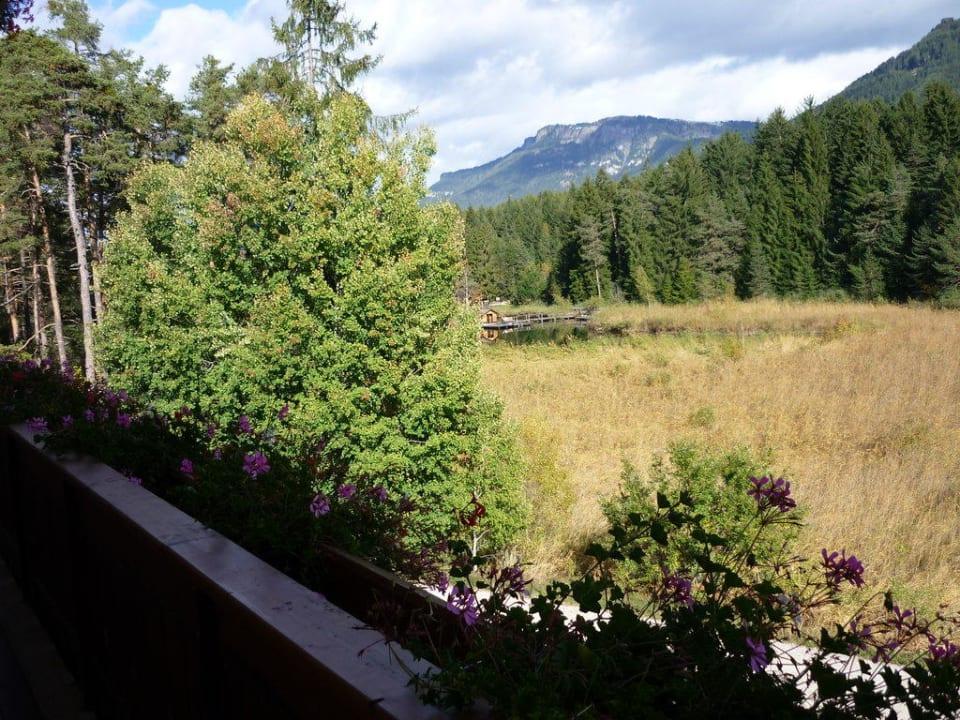 Blick zum Völser Weiher Hotel Waldsee