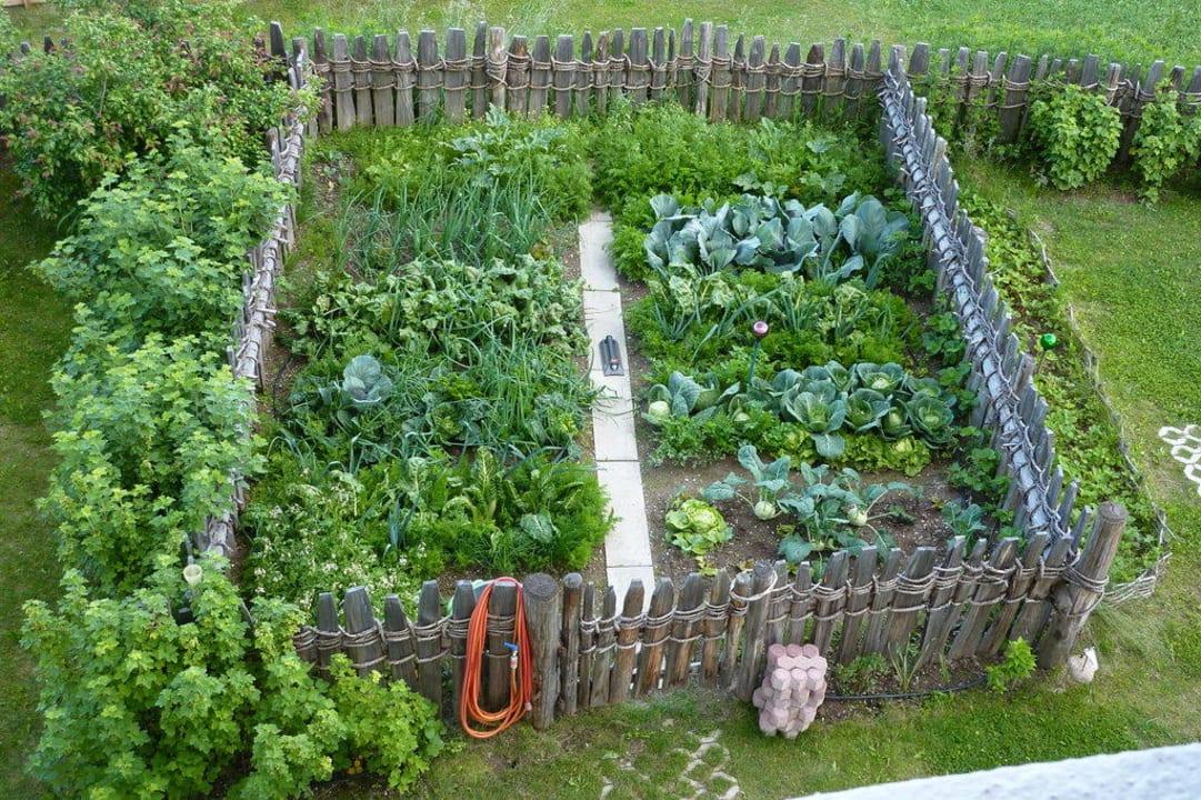 Gemüsegarten Weidacherhof