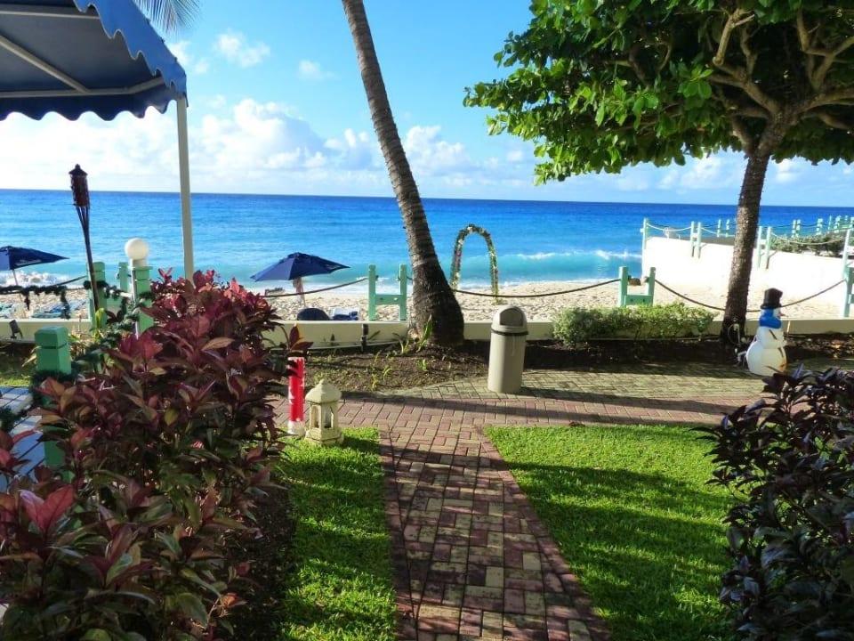 Da gibts nix zu meckern... Coral Mist Beach Hotel