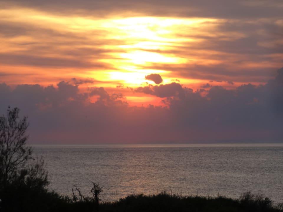 Ausblick Strandschloss Arielle