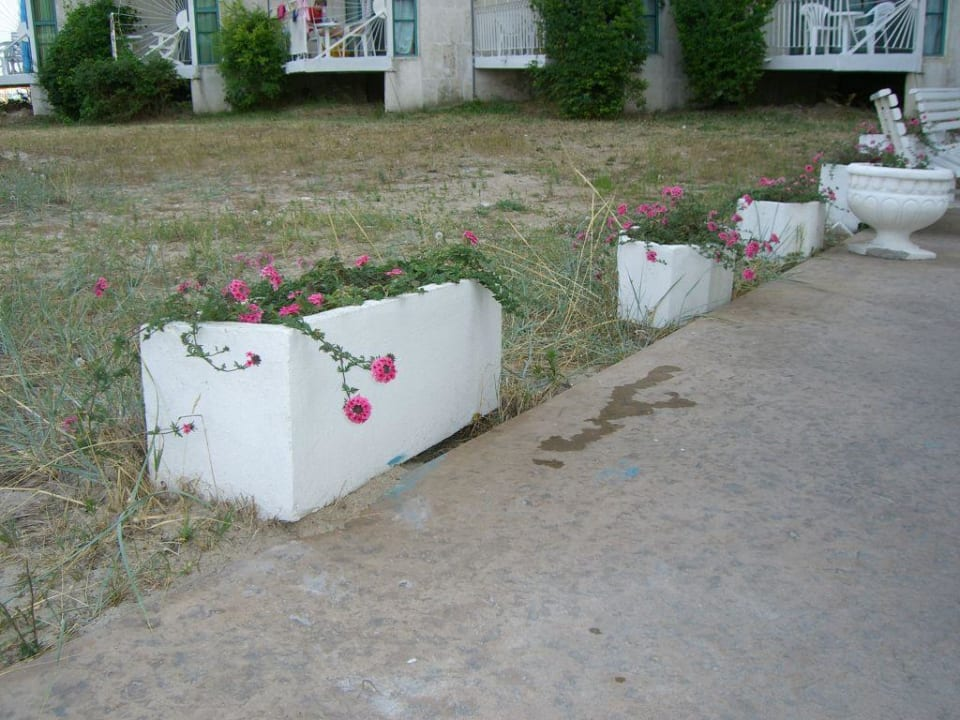 Wege-Dekoration auf bulgarisch Hotel Borjana