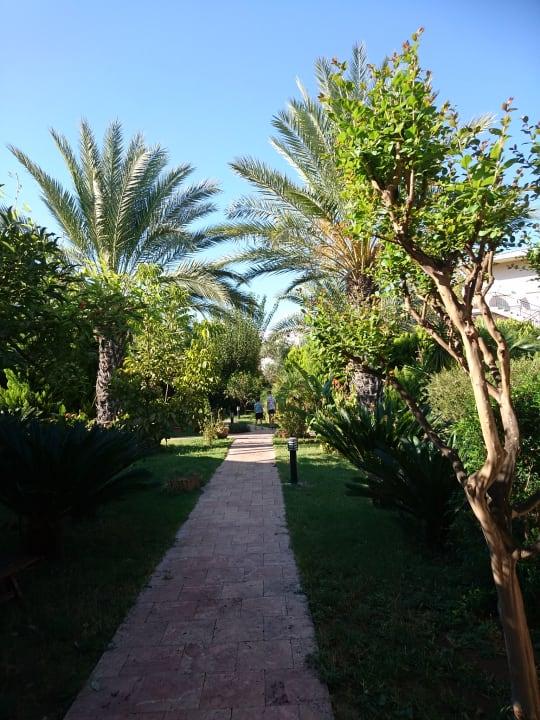 Gartenanlage Hotel Aida