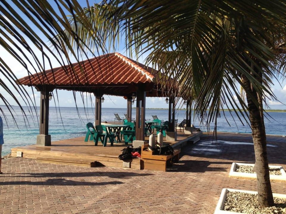 Tauchbasis Harbour Village Beach Club